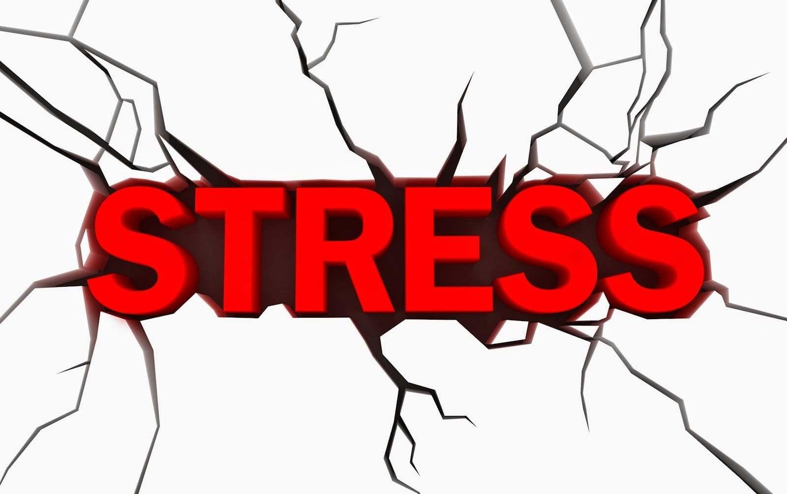Estresse e Sexo: A combinação nada perfeita