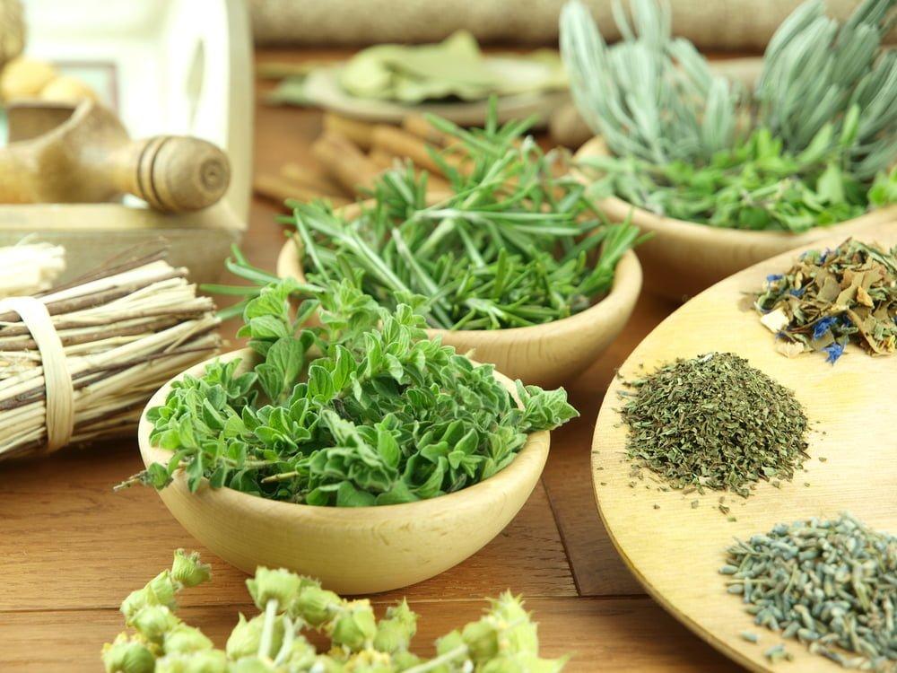 Resultado de imagem para ervas frescas
