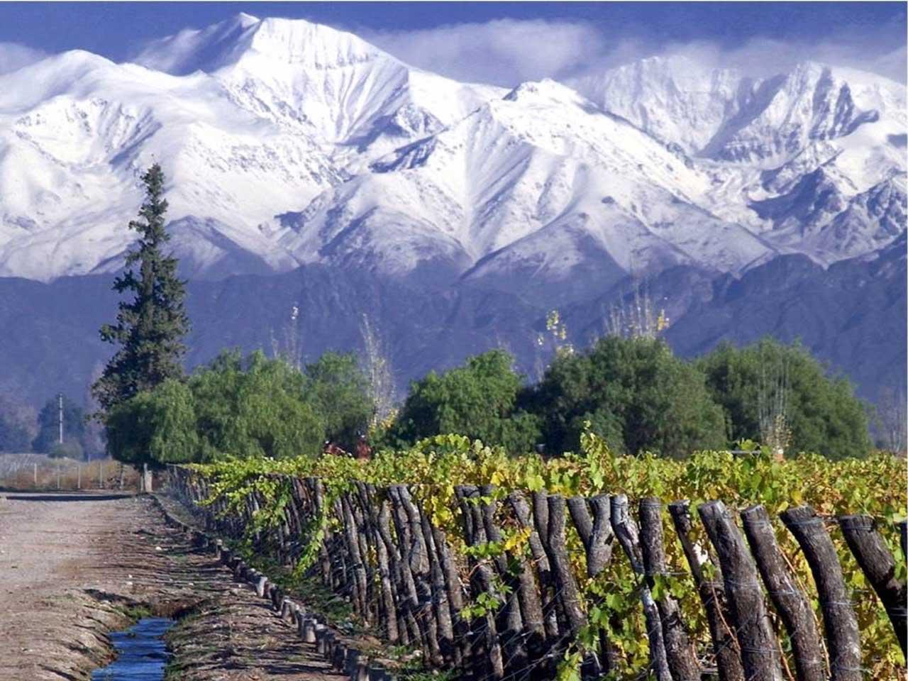 Novidades nos Vinhos do Chile